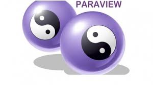 paraview2
